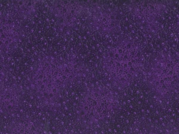 Eggplant/Fusions