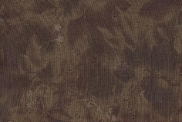 Centenary Collection/Yoko Saito