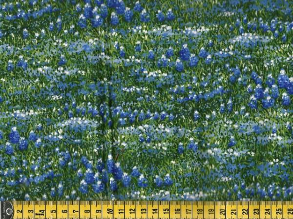 Wildflowers VI