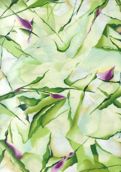 Daylily Fields/ REST NUR NOCH 0,8 M