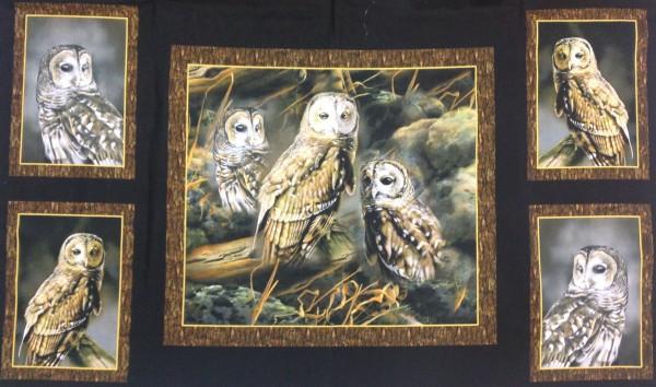 Nocturnal Wonders Owls Panel
