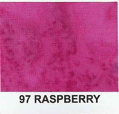 1895-97 Raspberry